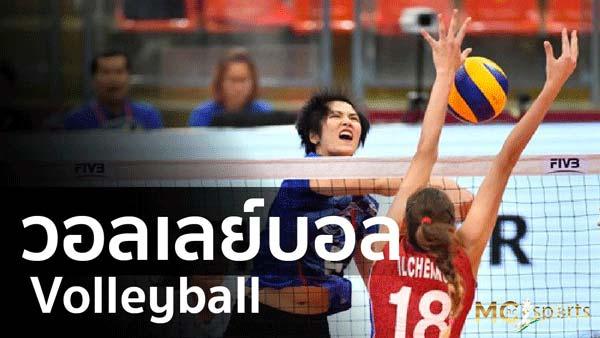 วอลเลย์บอล