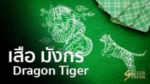 dragon tiger เสือ มังกร